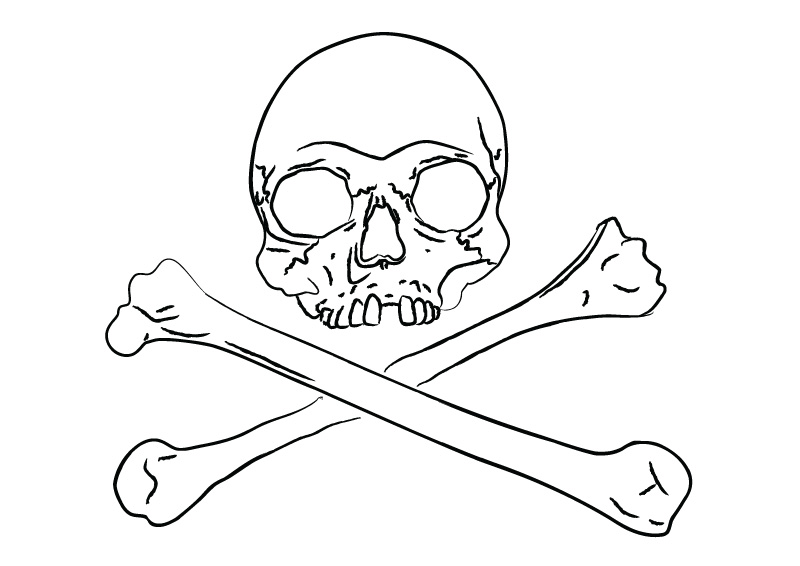 Line Art Skull : Line art skull download free vector illustration