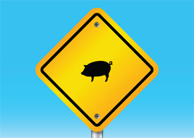 Pig warning sign free vector illustration thumb