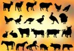 24 farm animal silhouettes thumb