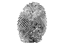 Vector fingerprint - free vector illustration