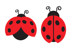 Lady bugs free vector art - thumb