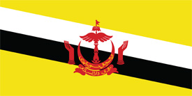 Free vector flag of Brunei