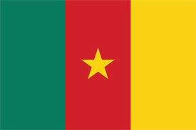 Free vector flag of Cameroon