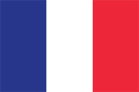 Free vector flag of France