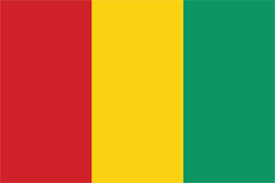 Free vector flag of Guinea
