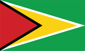 Free vector flag of Guyana