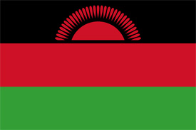 Free vector flag of Malawi