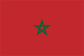 Free vector flag of Morocco