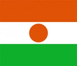 Free vector flag of Niger