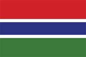Free vector flag of the Gambia