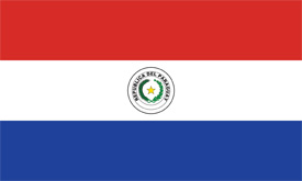 Free vector flag of Paraguay