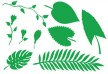 Jungle Plant Leaves and Flowers Vector Silhouettes