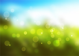 Vector Bokeh Effect On Grass And Sky Background
