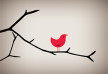 Bird On a Limb vector illustration