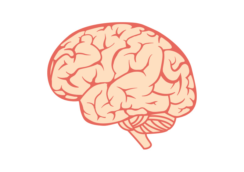 brain vector logo - photo #36