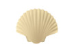 Seashell Free Vector Illustration