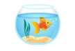 goldfish-aquarium-free-vector-illustration-thumb