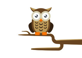 Owl on a Branch Free Vector