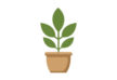 potted-plant-flat-vector-thumb