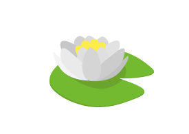 Waterlily Free Vector
