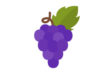 grape-flat-vector-thumb