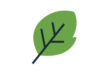 leaf-flat-vector-free-icon-thumb