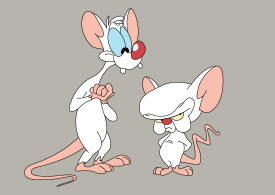 Pinky and the Brain Vector