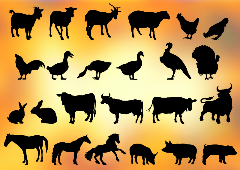 24 farm animal silhouettes free vector download beef cow silhouette vector cow vector silhouette