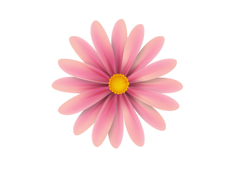 Pink flower vector illustration mightylinksfo